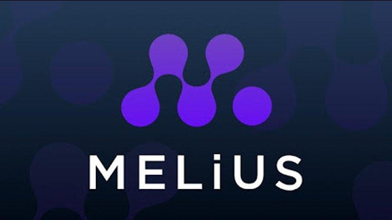 Melius : le nouveau MLM trading à découvrir