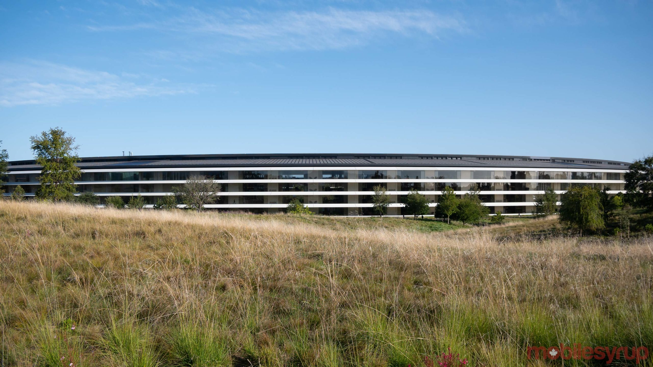 Le campus d'Apple
