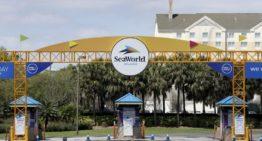 L'Union européenne examine l'offre de prêt de SeaWorld après le départ de la quasi-totalité de la main-d'œuvre – Skift