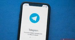 Le télégramme a touché 400 millions d'utilisateurs mensuels, grâce à la fonction d'appel vidéo sécurisé
